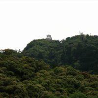 岐阜公園でカルガモおやこの様子をみてほっこりした写真と動画