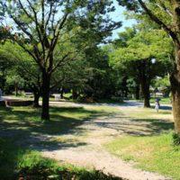 ポケモンGO 岐阜公園のポケモンの巣はフシギダネに入れ替えられた?ピカチュウ出ず。