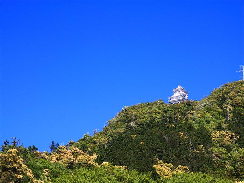 岐阜城 プレミアムフライデー金の御朱印