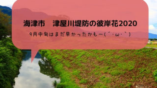 津屋川堤防の彼岸花2020