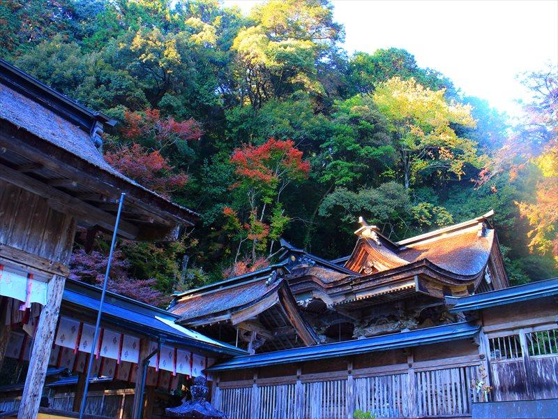 美濃市 大矢田神社の紅葉