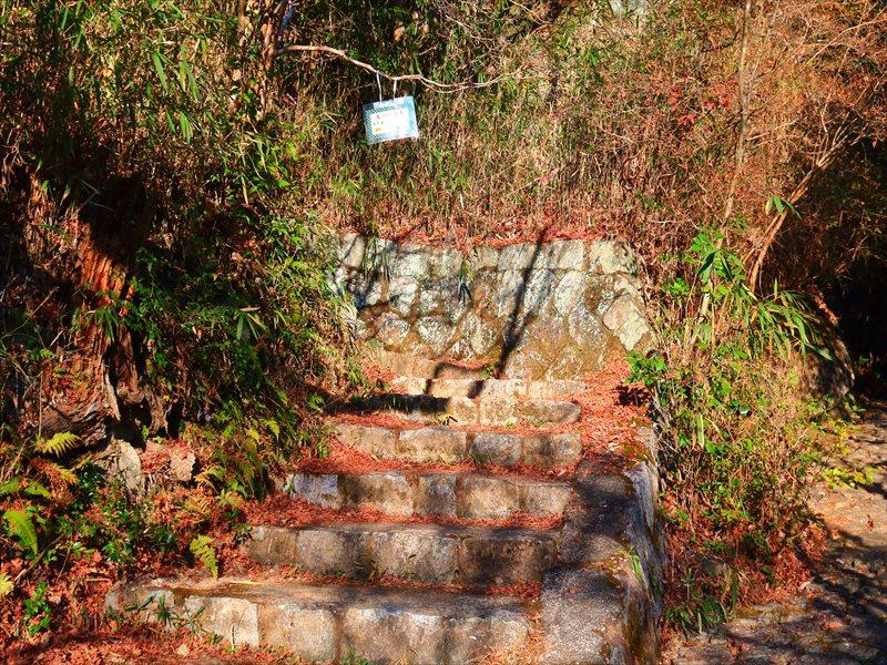 鬼岩公園 登山道
