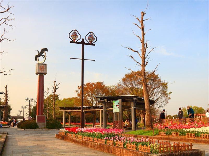 海津市 木曽三川公園センター チューリップ